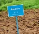 Поездка Relax.by в Шанти Дом, фото № 145