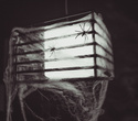 Halloween, фото № 35