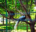День Рождения лучшего парка: Dreamland 10 лет, фото № 52