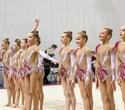 Международный турнир по эстетической групповой гимнастике «Сильфида-2019», фото № 40