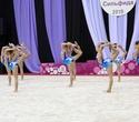 Международный турнир по эстетической групповой гимнастике «Сильфида-2019», фото № 9