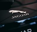Jaguar & Land Rover Road Show 2016, фото № 149